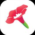 挖矿直播二维码破解版app下载 v1.0