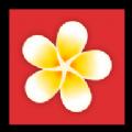 蛋花花app
