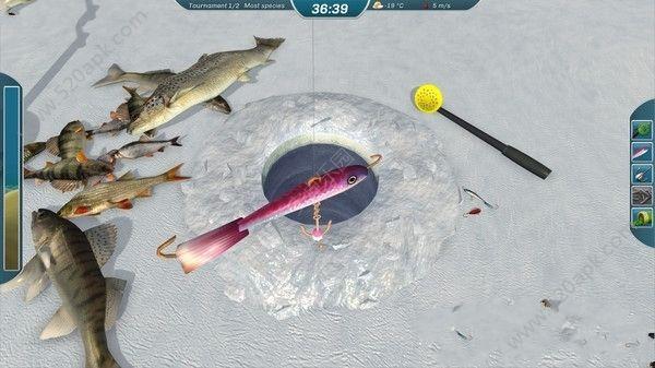 斗鱼钓鱼无限金币中文内购破解版(Ice Lakes)  v1650图3