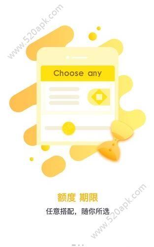 白狼小贷最新版app官方下载图2: