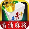 青浦本地麻将游戏安卓版下载 v1.0