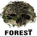 森林TheForest手机版游戏下载安装 v1.0