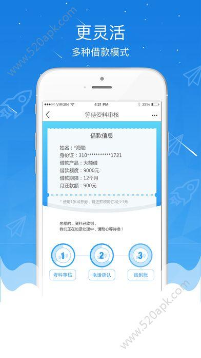 大力贷贷款app官网下载  v1.1.0图2