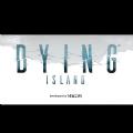 Dying Island无限提示通关汉化破解版 v1.0