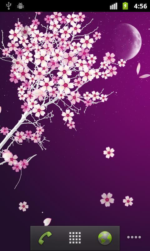 唯美浪漫樱花动态壁纸图2: