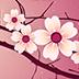 唯美浪漫樱花动态壁纸