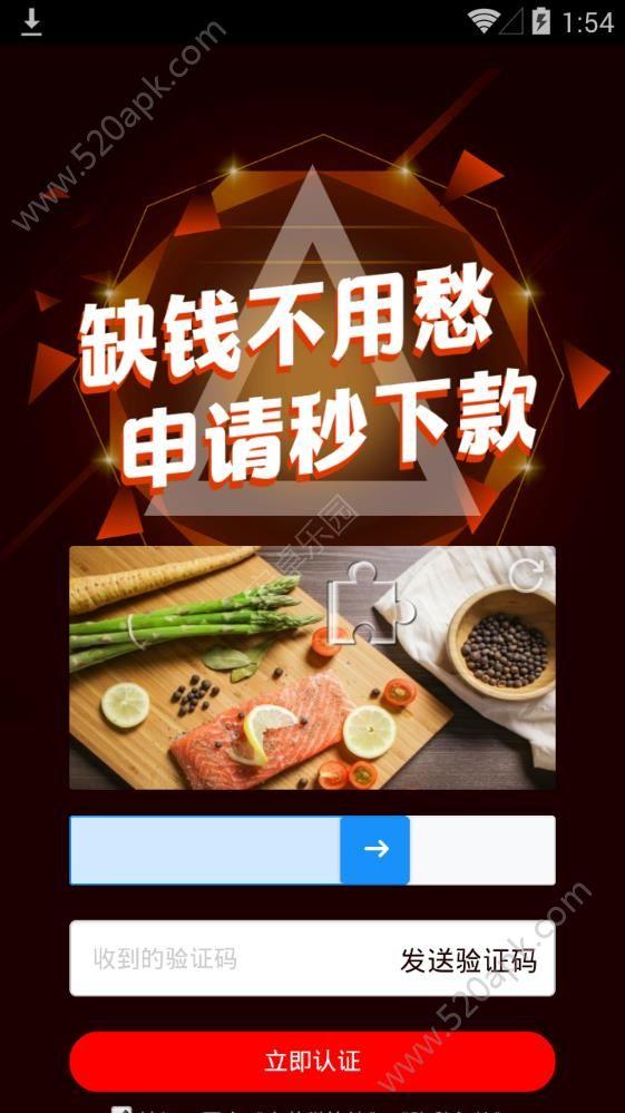 麻花借贷款app下载手机版图2: