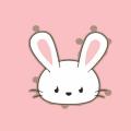 小兔借钱app