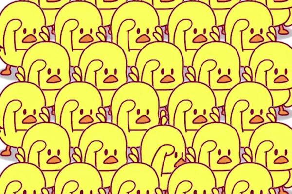 抖音小黄鸭背景音乐叫什么��小黄鸭背景音乐介绍