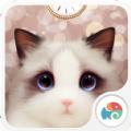 抖音短视频斑布偶猫壁纸图片大全下载 v1.0