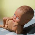 基因编辑婴儿模拟器中文版