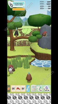 小鸟观察器游戏官方下载最新版  v3.1.8图2