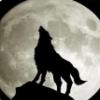 黑狼工具箱