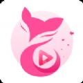天狐直播二维码软件官方版app下载 v1.0