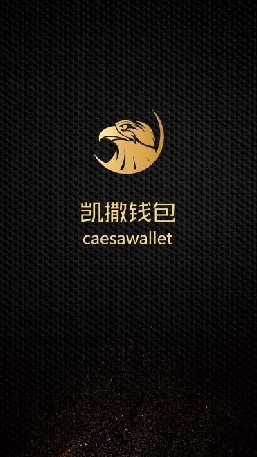 凯撒钱包app官方手机版图片1