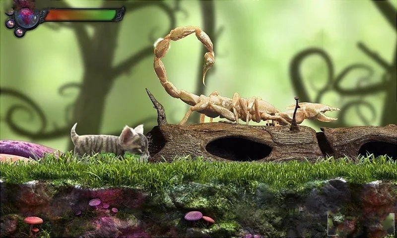 貓咪追尋神秘探險官網游戲下載安卓版圖片1