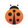 甲壳虫借款app