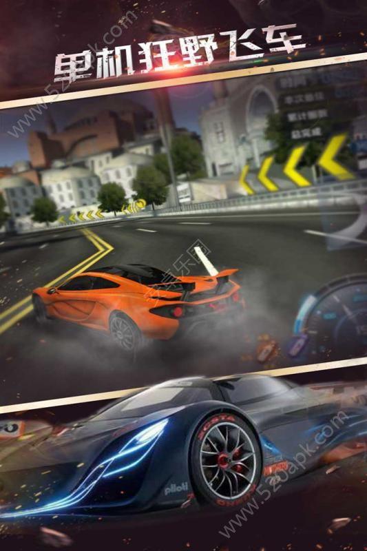 单机狂野飞车游戏官方网站安卓版图3: