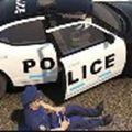 屌德斯警察模拟器破解版