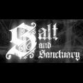 盐与避难所破解版