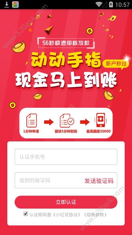 小红花贷款app下载手机版  v1.0.0.1图1