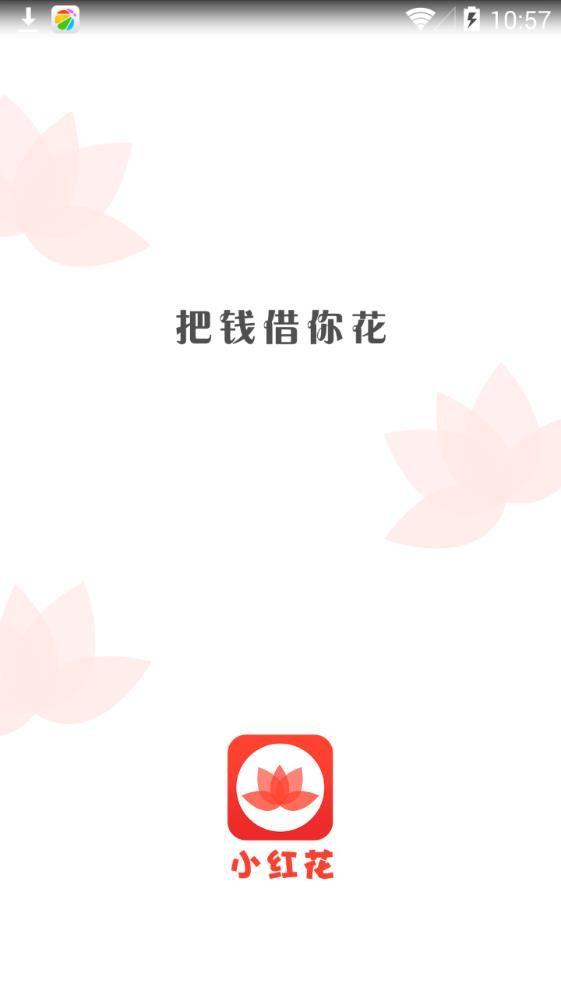 小红花贷款app下载手机版图片1