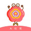 大红花贷款app手机版下载 v1.0.0