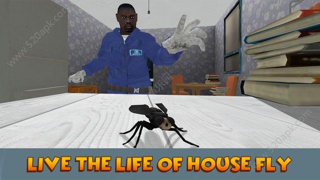 昆虫飞行模拟器3D游戏安卓中文版图1: