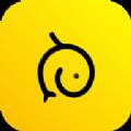 小白实习app官方手机版下载 v1.0.0