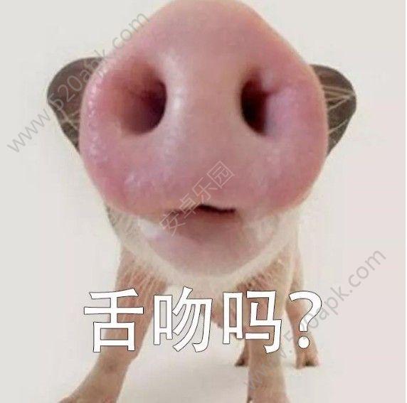 舌吻一只猪表情图片动态下载v1.0微信有图片表情声音大全图片