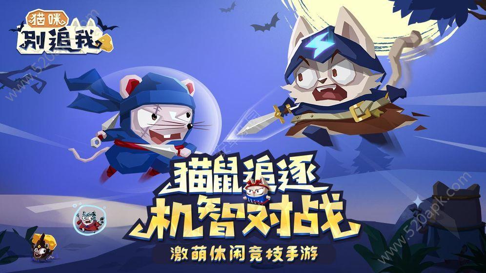 猫咪别追我官方唯一指定正版必赢亚洲56.net图片2