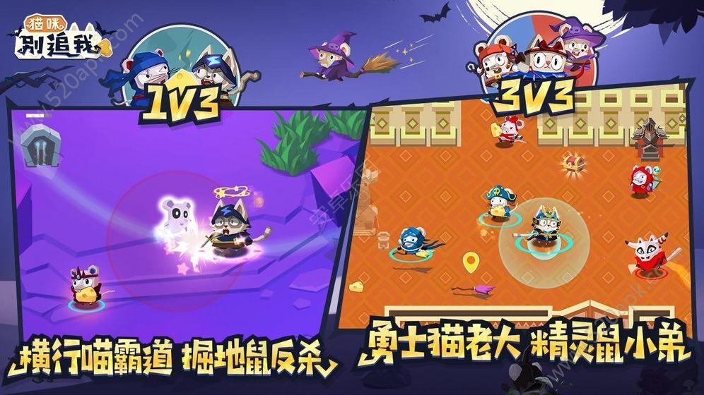 猫咪别追我官方唯一指定正版必赢亚洲56.net  v2.0图2