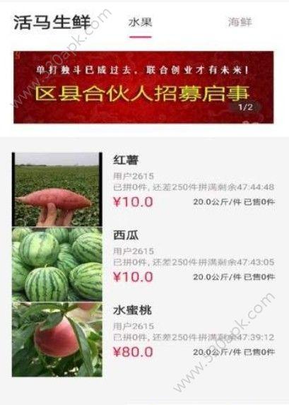 活马生鲜官方手机版app下载  v1.0.0图3