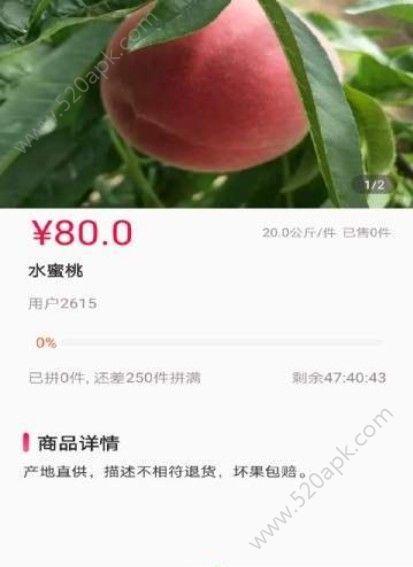 活马生鲜官方手机版app下载  v1.0.0图1