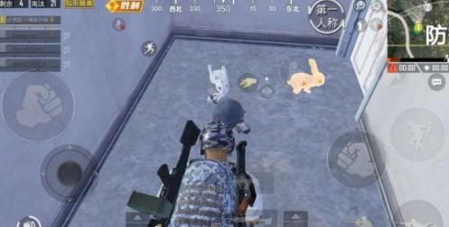 和平精英白色兔子与金色兔子有什么区别?