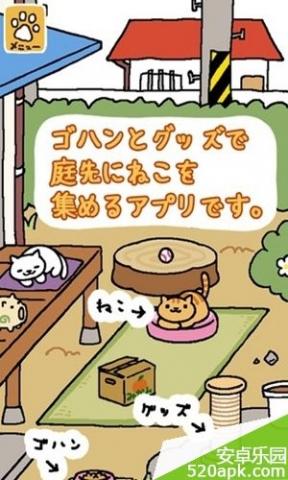 猫咪后院图1:
