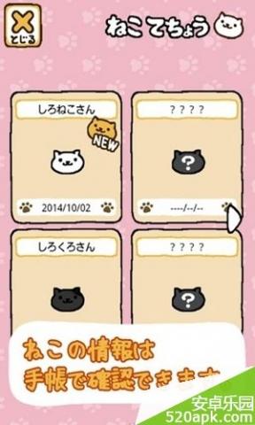 猫咪后院图2:
